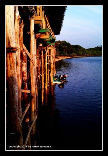 mangrovejetty03