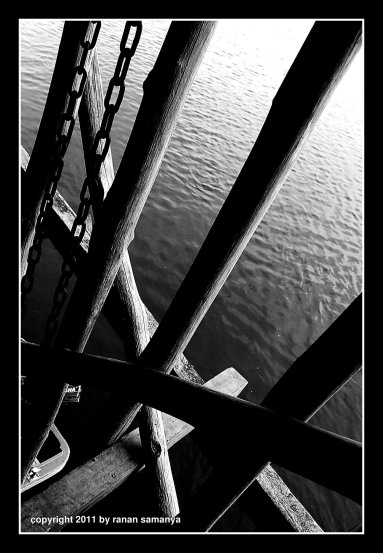 mangrovejetty07